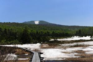 残雪うの湿原