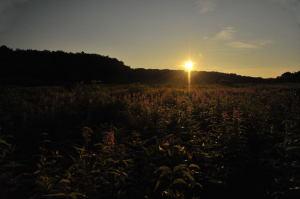 安比高原の夜明け